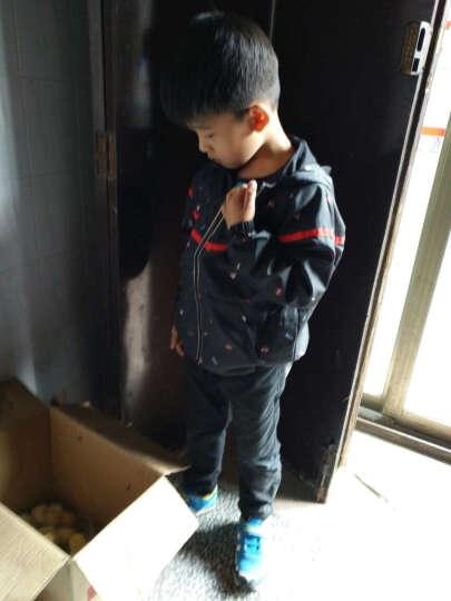 巴拉巴拉(BALABALA)童装男童外套中大童男孩拉链衫儿童卫衣男潮28051171204黄绿120 晒单图