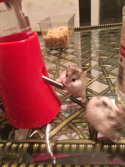 洁西(JESSIE)  仓鼠 水壶支架 水樽 饮水器支架 仓鼠玩具用品降温小屋 水壶支架+125ML水壶 晒单图