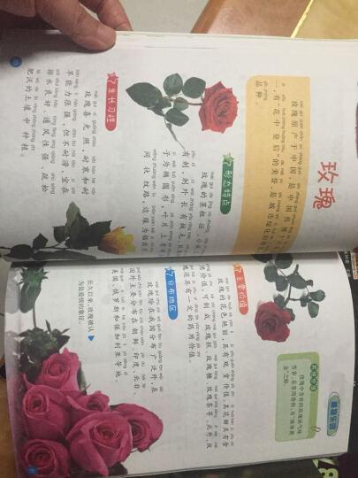 我的第一套百科全书大全6册 恐龙动物世界植物昆虫记套装彩图注音版 少年儿童读物小学生图书 晒单图