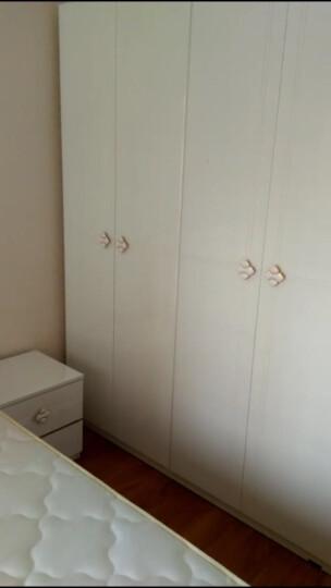 双虎(SUNHOO) 双虎家私烤漆四门衣柜多功能衣橱现代简约卧室储物柜15BJ1 四门 晒单图