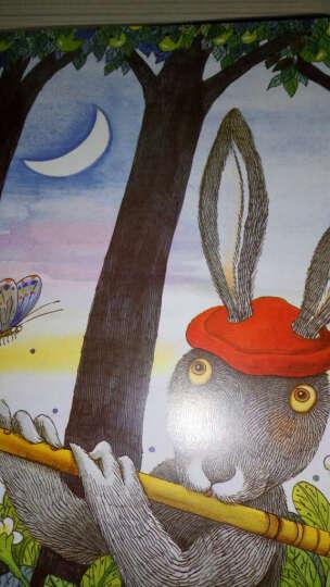 几米作品集(月亮忘记了+森林唱游)(套装共2册)又名月亮不见了小学生必读几米漫画全集全套绘 晒单图