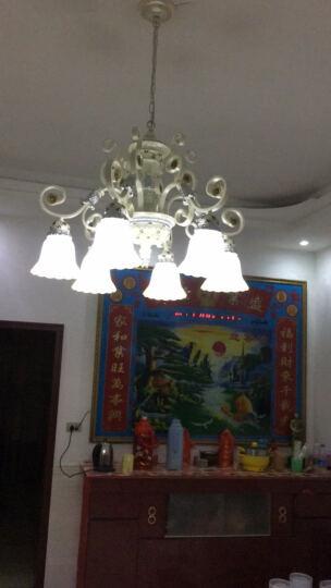 米族 欧式吊灯 简约现代创意客厅餐厅卧室吊灯 简欧灯饰灯具 3头+7瓦暖光LED光源 晒单图
