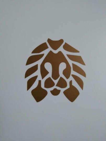 正豹(买2送1)潮牌狮子头鞋带AJ时尚鞋带小狮子编织手链手环 白色3M反光 晒单图