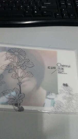 陈瑞-红尘叹(CD) 晒单图