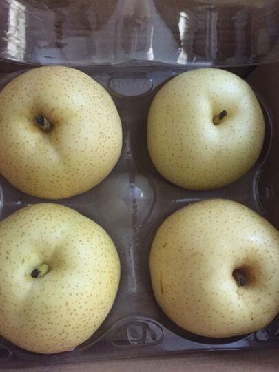 华圣 秋田梨 4个装 单果约320-350g 新鲜水果 晒单图