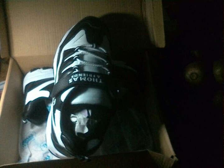 托马斯&朋友( THOMAS&FRIENDS )男童鞋熊猫儿童运动鞋中童防滑透气休闲鞋868153168002黑/白33 晒单图
