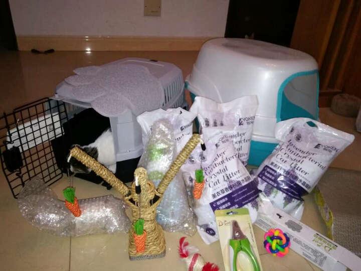 怡亲 宠物猫狗蹭脚垫猫砂盆垫 高级PVC纤维洗澡垫狗笼垫 M 晒单图