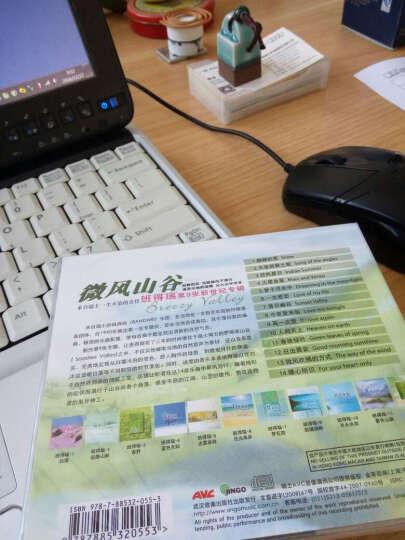 班得瑞乐团:微风山谷(CD) 晒单图
