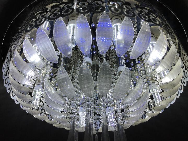 晶致 led灯泡玉米灯节能灯e27大螺口 LED玉米灯e14小螺口2U3U型灯 台灯管 36W-5U 白光高亮款 晒单图