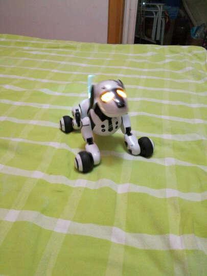 shifeng 实丰89种互动式智能玩具机器人 儿童遥控电动机器狗 语音互动 标配 晒单图