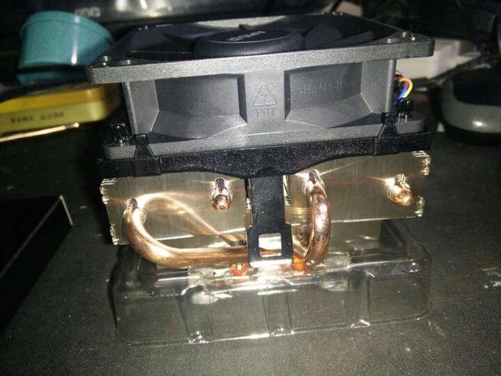 AMD FX系列 FX-8300 八核 AM3+接口 盒装CPU处理器 晒单图