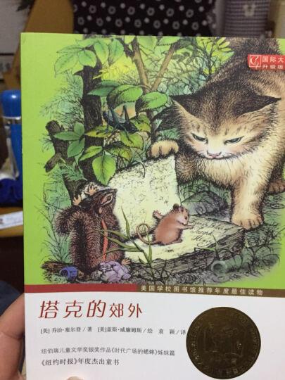 国际大奖小说 升级版 塔克的郊外 7-14岁青少年少儿童文学故事图书籍 四五六七八九年级 晒单图