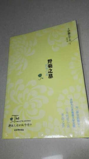 野菊之墓 晒单图