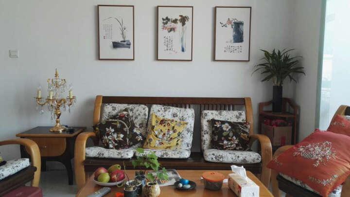 星川(Mkway) 客厅装饰画新中式沙发背景墙挂画三联壁画餐厅禅意水墨国画富贵花 F款-曲柳木色 60*90cm 晒单图