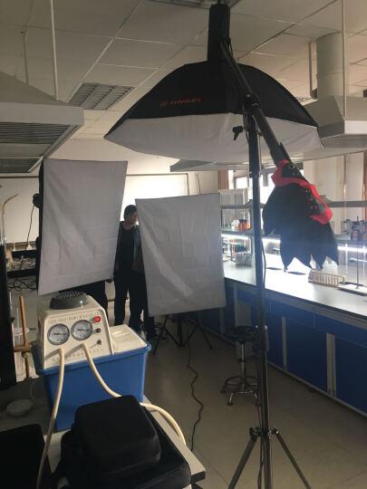 金贝EF-60 100 150 200LED专业摄影灯太阳灯视频摄像常亮灯婚纱人像写真儿童拍摄补光灯 EF200三灯实景棚套装 晒单图