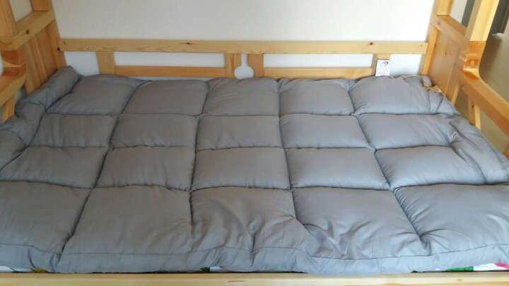 雅鹿家纺 乳胶床垫 床褥1.8米榻榻米床褥子 加厚柔软 单双人学生垫被 蓝色鲸鱼【6cm厚】 150*200cm 晒单图