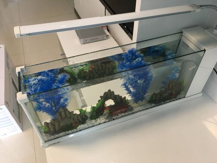 金利佳(Jeneca)鱼缸水族箱小型玻璃桌面迷你小鱼缸生态创意造景中型金鱼缸长方形 TG-23黑色大缸【标配+造景】 晒单图