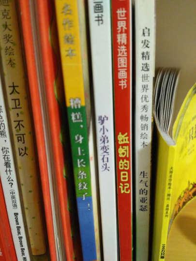 正版启发精选国际大师名作绘本 糟糕,身上长条纹了!0-2-3-4-5-6-7岁幼儿儿童绘本 晒单图