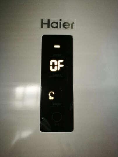 海尔(Haier)BCD-251WDPV 251升变频风冷无霜三门冰箱 晒单图