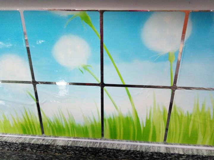 厨房防油贴纸透明玻璃贴瓷砖贴防水墙贴油烟机橱柜贴纸 白色鲜花图案90*60 晒单图