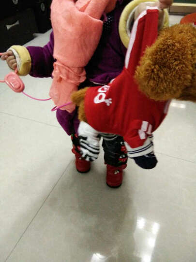蓓茹儿 儿童电动玩具狗狗走路会唱歌仿真狗遥控机械狗牵绳毛绒小狗泰迪 连体衣红色(送礼包)48首充电款(可调节音量) 晒单图