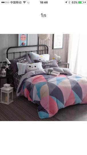 馨窝 床笠四件套全棉简约加厚夹棉床罩四件套纯棉床上用品床品套件 蓝鲸 (四件套)1.8米床笠 2*2.3米被套 晒单图