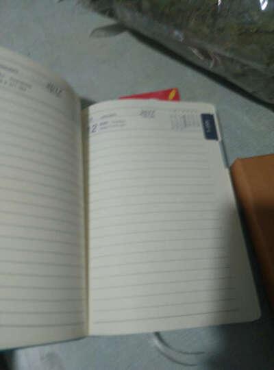 2019年日程本B5效率手册工作日历记事本365每日计划本A5创意简约韩国学生时间轴管理笔记本子文具 25K天蓝 晒单图