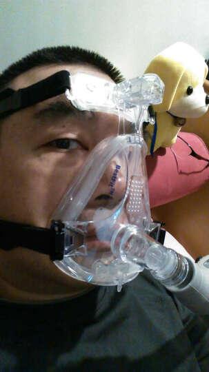 吉康传奇 进口呼吸机打呼噜家用商旅单水平睡眠便携式智能全自动清洁打鼾止鼾器 AUTO全自动+血氧仪+礼包 晒单图