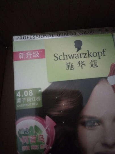 施华蔻(Schwarzkopf)怡然染发霜4.08栗子褐红棕(染发剂 无氨植物)(新老包装随机) 晒单图