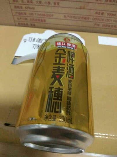 珠江啤酒(PEARL RIVER)凯旋牌 菠萝味啤酒 330ml听 1*24听整箱装 晒单图