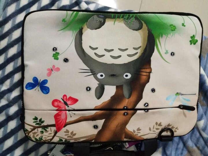 17寸龙猫壁纸