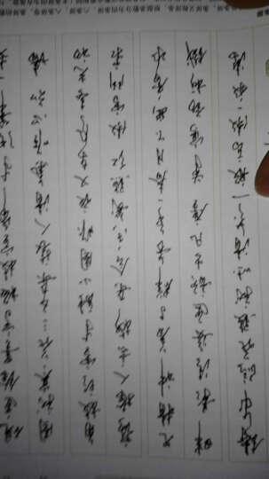沈鸿根实用行草字帖 连笔字行书草书字帖公务员成人学生速成练习行草体钢笔硬笔书法临摹墨点字帖 晒单图