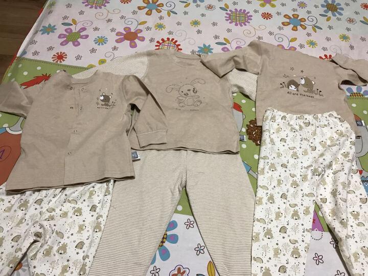 俞兆林(YUZHAOLIN) 【男女童/7款可选】宝宝内衣婴儿套装彩棉新生儿衣服2件套 肩扣 刺猬和小熊-棕色 100CM 晒单图