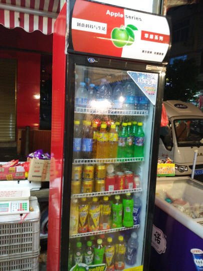 乐创(lecon) 啤酒展示柜冷藏立式冰柜商用冰箱饮料饮品保鲜单门双门三门冷柜水果鲜花点菜 蓝白色双门 风冷 晒单图