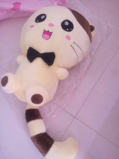 可爱大脸猫毛绒玩具 超大号玩偶猫洋娃娃