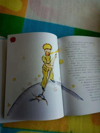 小王子 晒单图