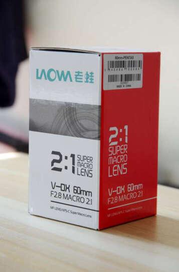 老蛙(LAOWA)CF 60mm F2.8 2:1倍超微距镜头(索尼镜头E卡口) 晒单图