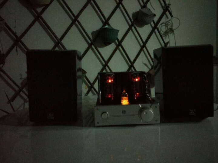 索威(SV)JP34 功放 胆机功放机 HIFI电子管音响 音响功放器 (银色) 晒单图