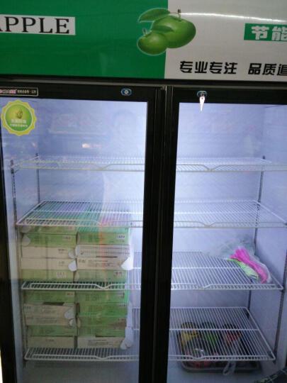 乐创(lecon) 啤酒展示柜冷藏立式冰柜商用冰箱饮料饮品保鲜单门双门三门冷柜水果鲜花点菜 绿黑色双门 直冷 晒单图