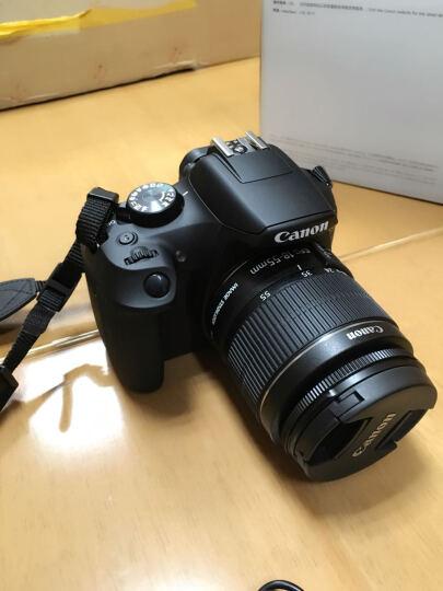 佳能(canon)入门/家用数码单反相机 EOS 1300D(18-55/50F1.8)双镜头套装 晒单图