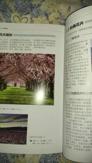 摄影书籍 摄影大讲堂——数码单反摄影从入门到精通摄影初学者宝典 (赠后期处理视频教学) 晒单图