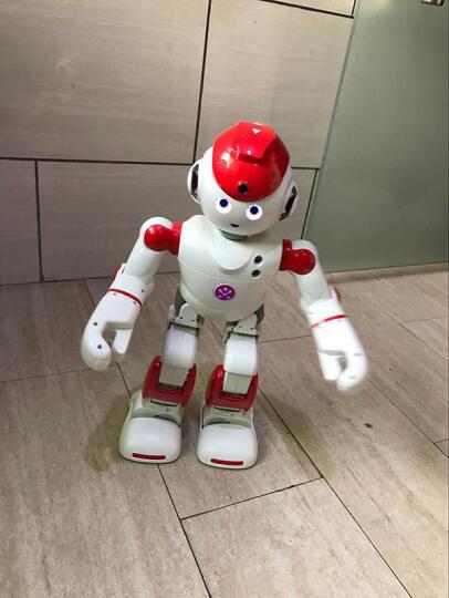 优必选(UBTECH) 【官方授权专卖店】优必选阿尔法Alpha 2二代智能机器人玩具 Alpha2 晒单图