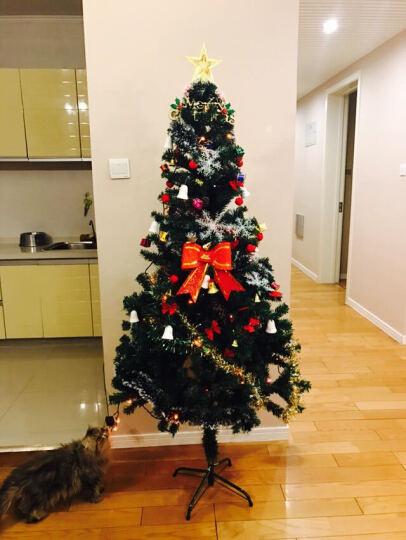 圣诞树套餐彩灯加密枝头 圣诞节装饰品挂件礼物套餐 1.8米豪华套餐(120个配件+450个枝头) 晒单图