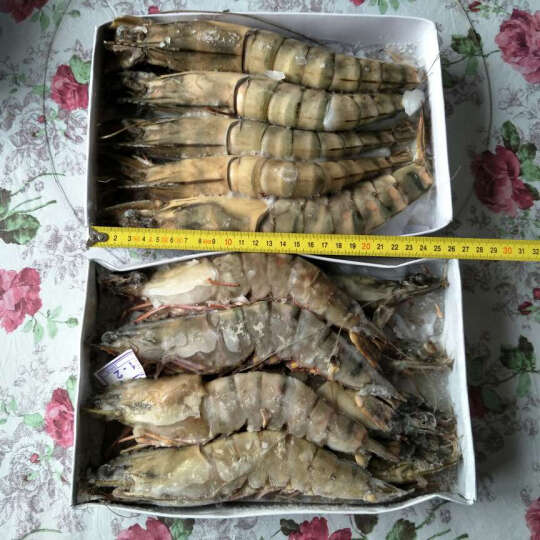 越南进口活冻大草虾海鲜礼盒