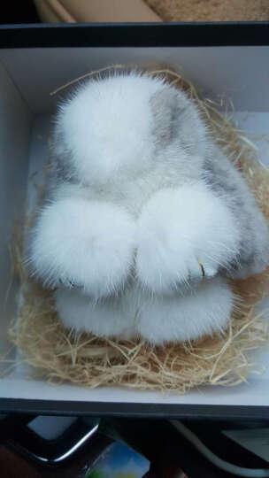 哥本哈根天鹅绒级水貂毛整皮装死兔皮草挂件萌萌兔懒兔包挂件兔子挂件 棕色8cm 晒单图