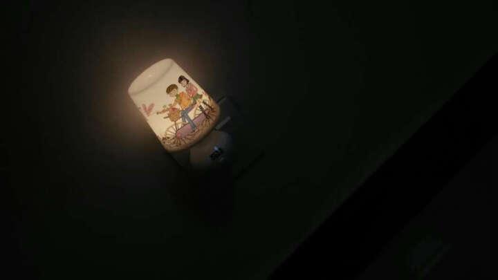 欣兰雅舍(XLYS) 小夜灯led灯喂奶 智能遥控(开关)定时夜光灯 氛围卧室睡眠灯 升级版浪漫之旅-黄光 晒单图