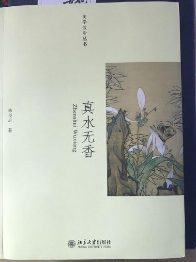 真水无香 朱良志 小说 书籍 晒单图