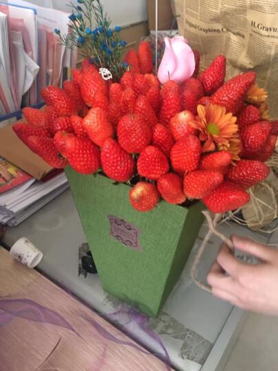 桐果 山东烟台甜宝奶油草莓 1kg 晒单图