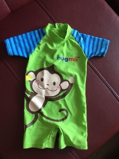 hugmii 儿童泳衣连体男童宝宝女童游泳衣适合2-12岁 黄色青蛙 90码(70-80cm) 晒单图
