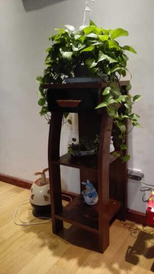 金写意定制家具 花架 客厅木质装饰花架